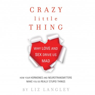 Crazy Little Thing - Liz Langley