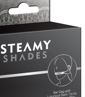 Satin Tie Bar Gag - Steamy Shades