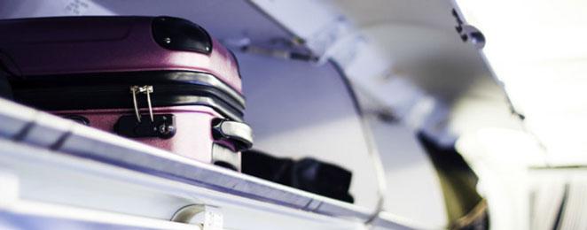 woman hides clitoris vibrators in luggage